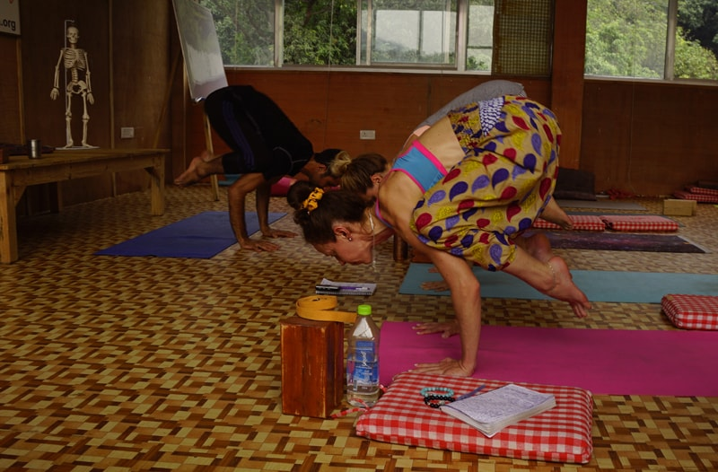 300 hr yoga teacher training in india